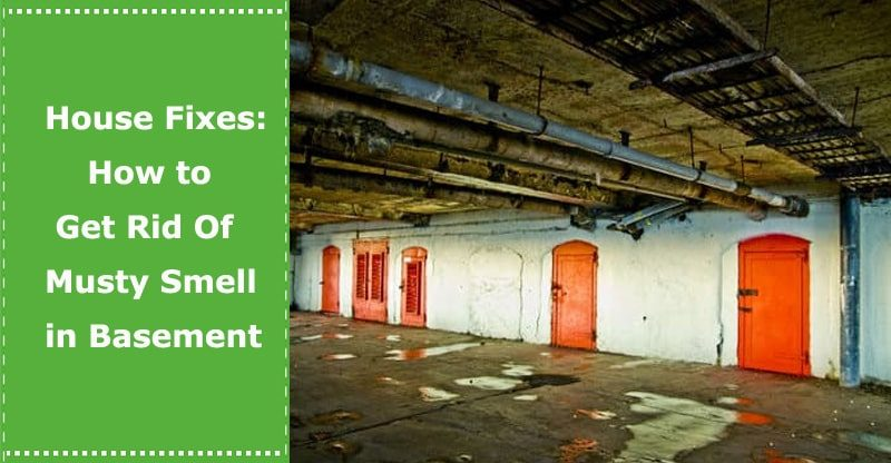 how to get rid of a musty basement smell